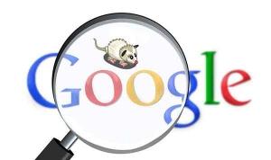 Rilasciato Google Possum Update